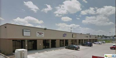 Commercial Lease For Lease: 2501 S W S Young Drive #201,202