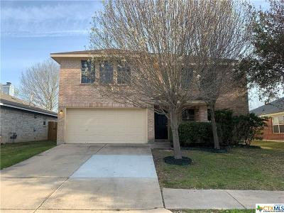 Pflugerville Single Family Home For Sale: 1904 Fast Filly Avenue
