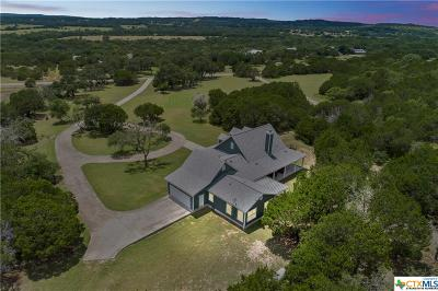 Hays County Single Family Home For Sale: 407 Blue Creek Drive