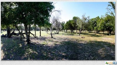 Lampasas Residential Lots & Land For Sale: 2455 Fm 1715