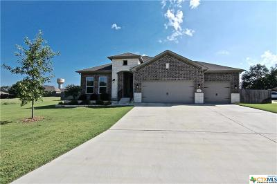 Temple, Belton Single Family Home For Sale: 243 Archstone Loop