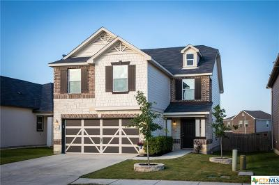 New Braunfels Single Family Home For Sale: 4025 Legend Pond