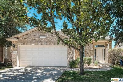 Austin Single Family Home For Sale: 11904 Johnny Weismuller Lane #4