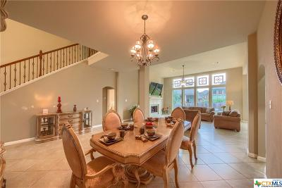 New Braunfels Single Family Home For Sale: 520 Oak Cascade