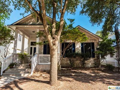 Kyle Single Family Home For Sale: 189 Teasley