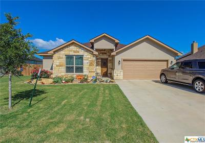 Jarrell  Single Family Home For Sale: 329 Western Sky
