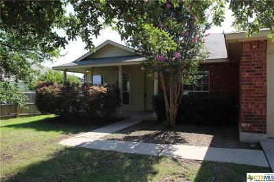 Coryell County, Falls County, McLennan County, Williamson County Single Family Home For Sale: 2304 Butler Way