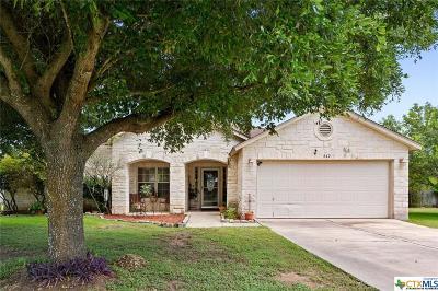 Kyle Single Family Home For Sale: 842 Bella Vista Circle