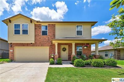 Williamson County Single Family Home For Sale: 301 San Antonio Riverwalk