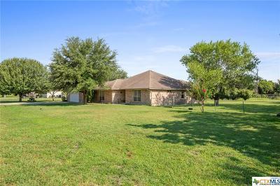 Bartlett Single Family Home For Sale: 822 W Bell Street