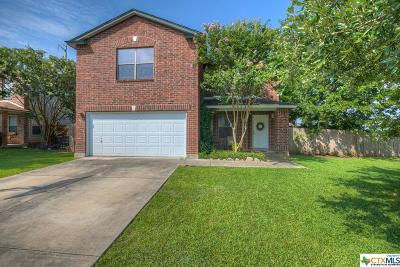 New Braunfels Single Family Home For Sale: 1344 Copper Path Drive