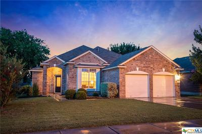 New Braunfels Single Family Home For Sale: 2043 Belvedere Court