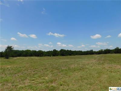 Bell County, Burnet County, Coryell County, Lampasas County, Mills County, Williamson County, San Saba County, Llano County Residential Lots & Land For Sale: 324 Hidden Valley Road