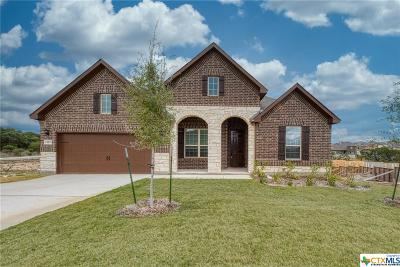 New Braunfels Single Family Home For Sale: 1107 Roaring Falls