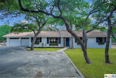 New Braunfels Single Family Home For Sale: 455 Lark Lane
