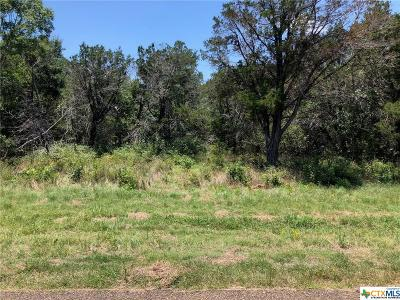 Bell County, Burnet County, Coryell County, Lampasas County, Mills County, Williamson County, San Saba County, Llano County Residential Lots & Land For Sale: Tbd (Lot 2) Owl Creek Road