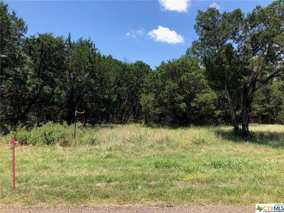 Bell County, Burnet County, Coryell County, Lampasas County, Mills County, Williamson County, San Saba County, Llano County Residential Lots & Land For Sale: Tbd (Lot 3) Owl Creek Road