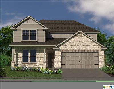 Williamson County Single Family Home For Sale: 184 Bethann Loop