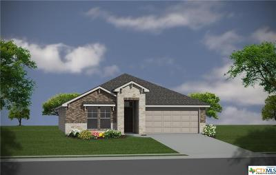 Taylor Single Family Home For Sale: 185 Bethann Loop
