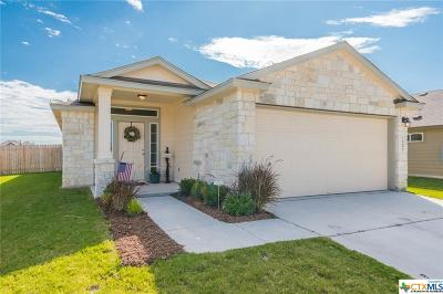 New Braunfels Single Family Home For Sale: 2257 Lighthouse Drive