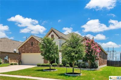 Hutto Single Family Home For Sale: 204 Emory Fields Drive