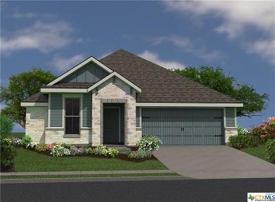 Taylor Single Family Home For Sale: 179 Bethann Loop