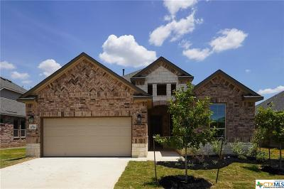 Helotes Single Family Home For Sale: 15718 La Subida Trail