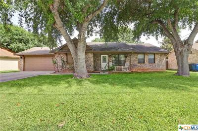 New Braunfels Single Family Home For Sale: 738 Sunshadow Drive