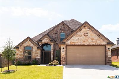 Bell County Single Family Home For Sale: 2829 Mystic Mountain Lane