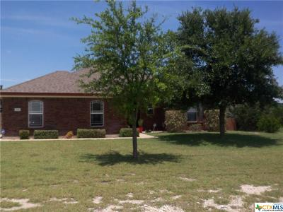 Kempner Single Family Home For Sale: 291 County Road 4709