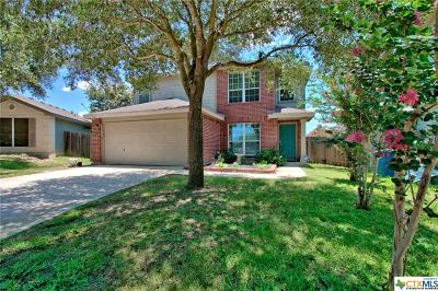New Braunfels Single Family Home For Sale: 203 Goliad Drive