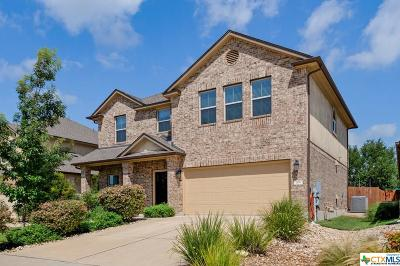 Coryell County, Falls County, McLennan County, Williamson County Single Family Home For Sale: 105 Cortona Lane