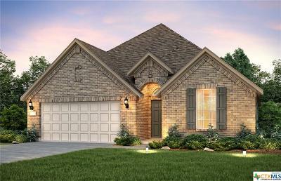 New Braunfels Single Family Home For Sale: 2165 Kiskadee Drive