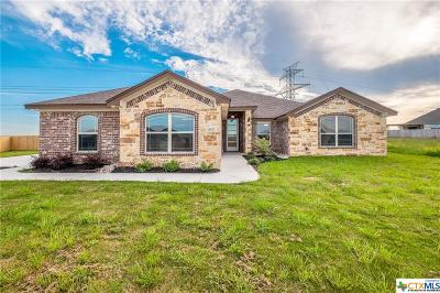 Salado Single Family Home For Sale: 4337 Green Creek Drive