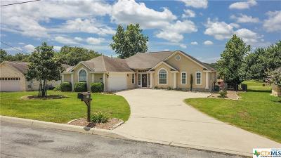 Canyon Lake Single Family Home For Sale: 318 Brooklynn Lane