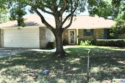New Braunfels Single Family Home For Sale: 116 Ann Street