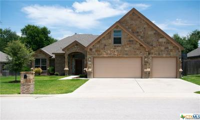 Belton Single Family Home For Sale: 3204 Purple Sage Drive