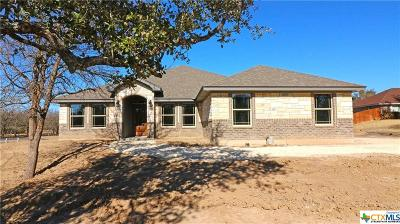 Kempner  Single Family Home For Sale: 1064 County Road 3150 #315O