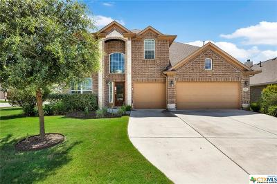 Round Rock TX Single Family Home For Sale: $370,000
