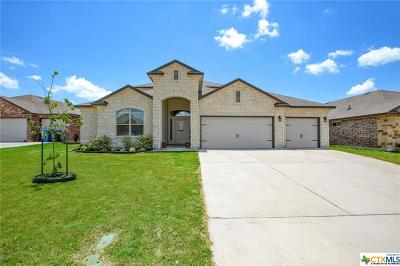 Waco TX Single Family Home For Sale: $314,900