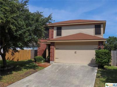 New Braunfels Single Family Home For Sale: 236 Eagle Pass Drive