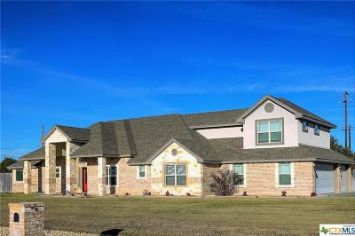 Kempner TX Single Family Home For Sale: $369,900