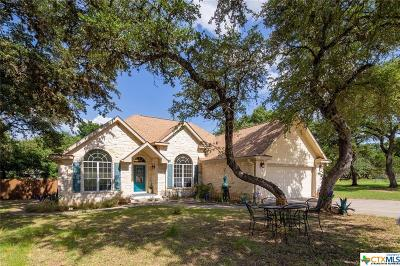 Hays County Single Family Home For Sale: 7 Twilight Terrace