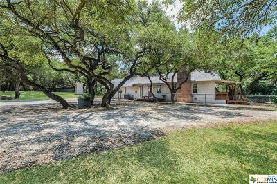Canyon Lake Single Family Home For Sale: 281,221 Jacobs Creek Park Rd Road