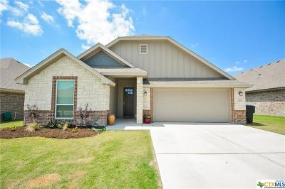Temple, Belton Single Family Home For Sale: 3509 Crystal Ann Drive
