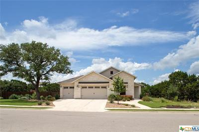 Georgetown TX Single Family Home For Sale: $389,995