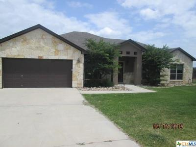 Salado Single Family Home For Sale: 1041 Jewel Lane