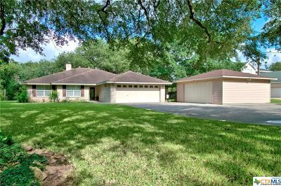 Seguin Single Family Home For Sale: 244 Deer Slayer Drive