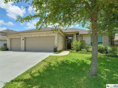 New Braunfels Single Family Home For Sale: 817 Walzem Mission Road