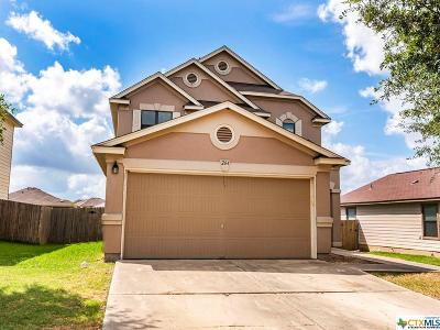 Hays County Single Family Home For Sale: 264 Cordero Drive